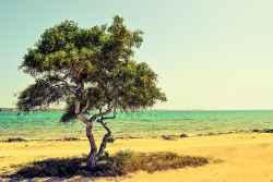 27.04.2021: 希腊哪些旅游景点值得打卡?