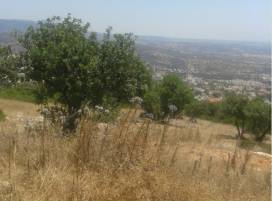 Cyprus property, Land for sale ID:10323