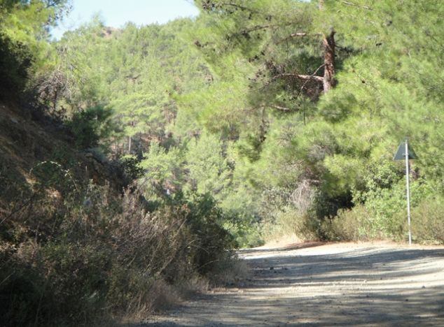 Sell Land 10874 in Troodos