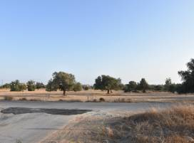 Cyprus property, Land for sale ID:11260