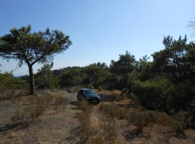 Buy Land 1181 in Troodos