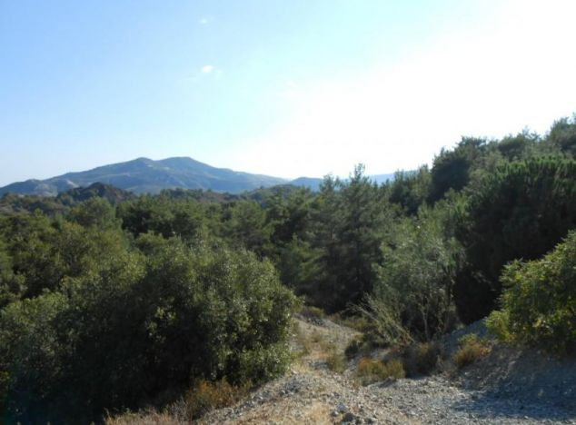Land 1183 in Troodos