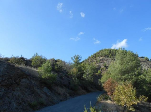 Buy Land 1185 in Troodos