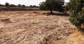 Cyprus property, Land for sale ID:12841