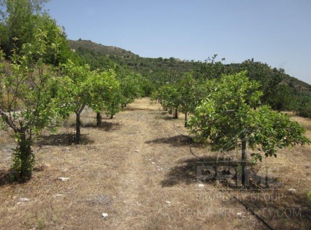 Land 16031 on sell in Troodos