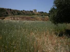 Property in Cyprus, Land for sale ID:1607