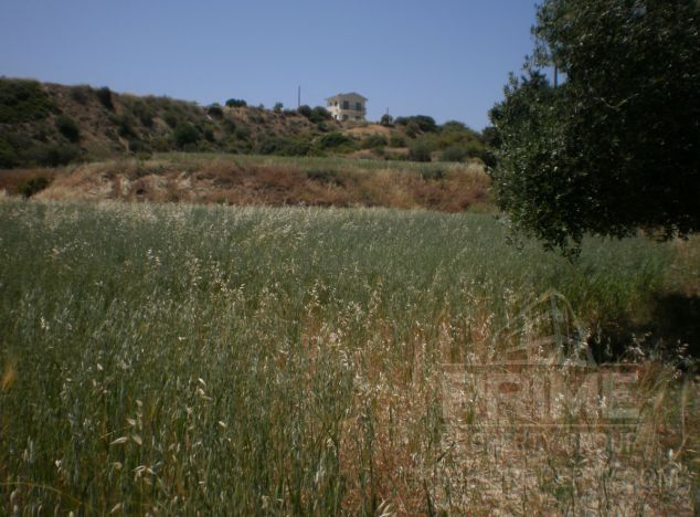 Buy Land 1607 in Pissouri