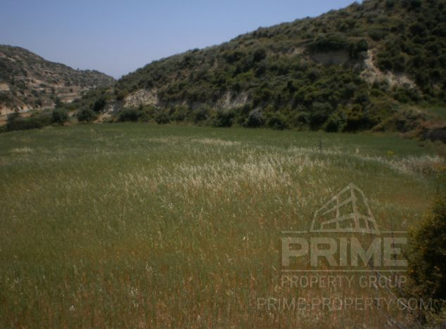 Land 1607 in Pissouri