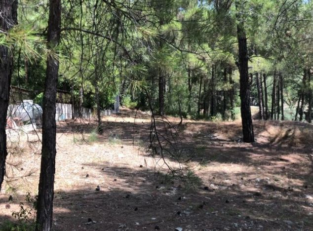 Sell Land 16145 in Troodos