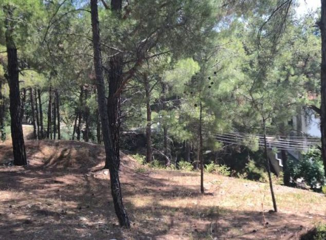 Land 16145 on sell in Troodos