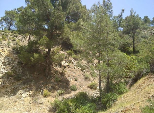Sell Land 16426 in Troodos