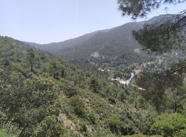 Land 16426 in Troodos