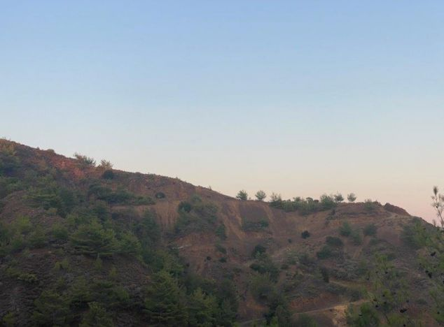 Buy Land 16722 in Troodos