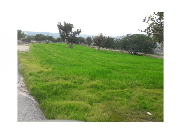 Buy Land 16739 in Limassol