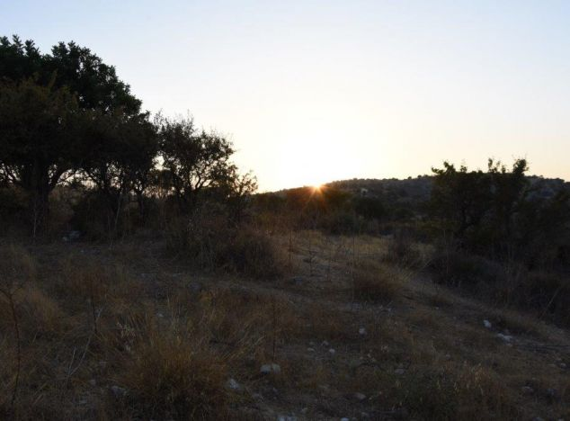 Buy Land 16791 in Paphos