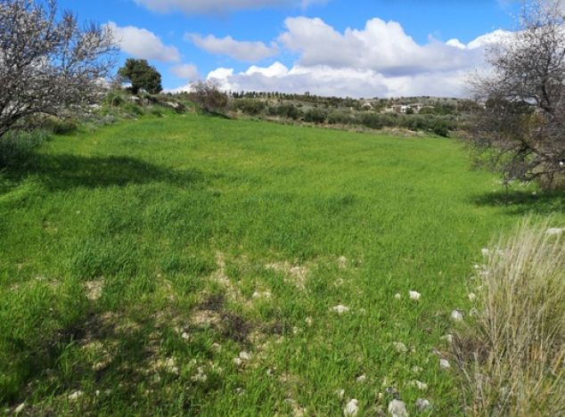 Sell Land 17750 in Paphos