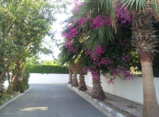 Villa 2160 on sell in Larnaca