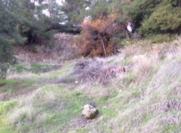 Land 2162 on sell in Troodos