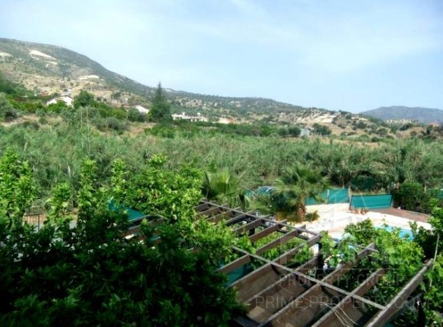 Cyprus property, Villa for sale ID:2442