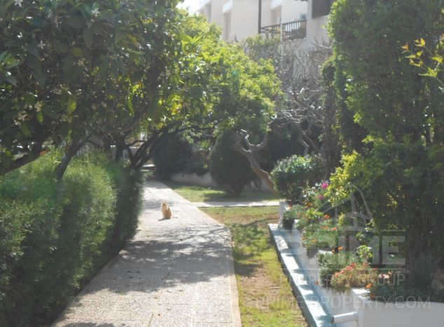 Cyprus property, Apartment for rent ID:2576