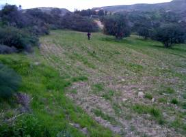 Cyprus property, Land for sale ID:2961