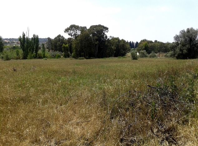 Buy Land 2987 in Nicosia