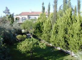 Cyprus property, Villa for sale ID:343