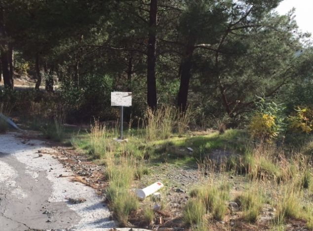 Buy Land 4567 in Troodos