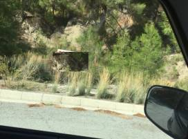 Property in Cyprus, ID:4569