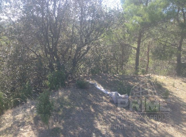 Cyprus property, Land for sale ID:4600