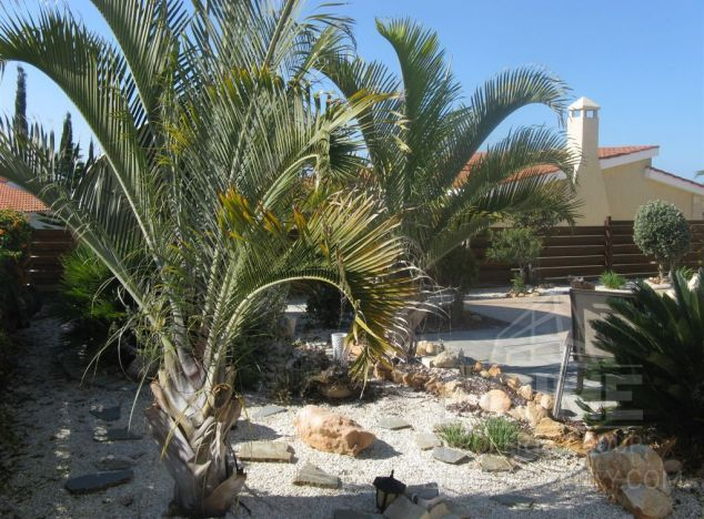 Cyprus property, Bungalow for sale ID:4633