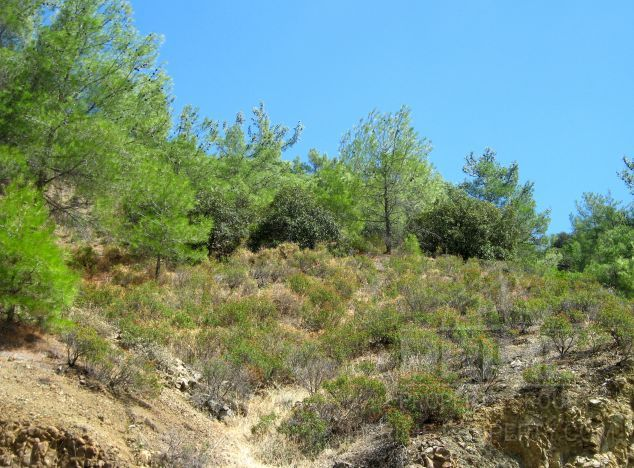 Cyprus property, Land for sale ID:4787