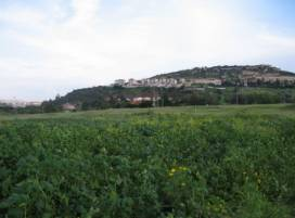 Cyprus property, Land for sale ID:4999