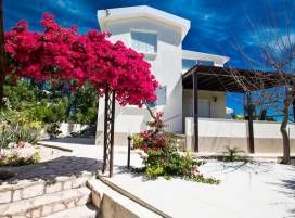 Cyprus property, Villa for holiday rent ID:5514