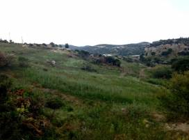 Cyprus property, Land for sale ID:5736