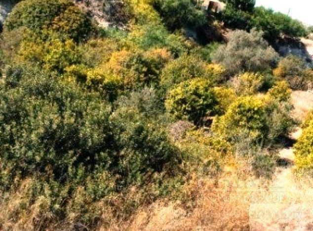 Cyprus property, Land for sale ID:6714