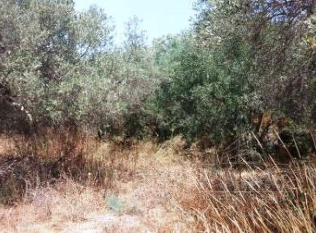 Cyprus property, Land for sale ID:6715