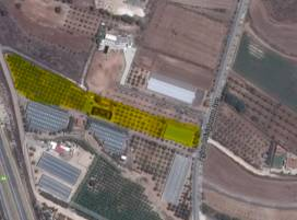 Cyprus property, Land for sale ID:8443