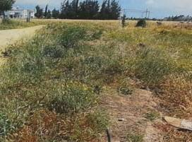 Cyprus property, Land for sale ID:8969