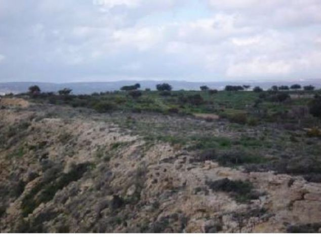 Land 9621 on sell in Pissouri