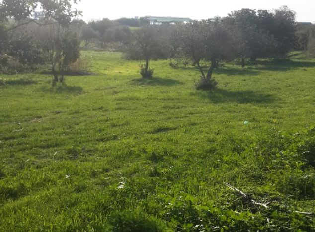 Sell Land 9791 in Larnaca